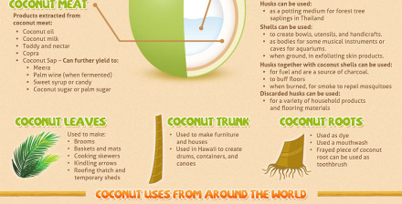 coconut uses